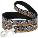 Disney Mickey Mouse W/Glasses poses Gray Dog Leash 0.5″ Wide, 6′ Long, Multicolor