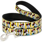 Disney Minnie Mouse W/Hat poses Stripe Yellow/White Dog Leash 0.5″ Wide, 6′ Long, Multicolor